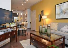 Rental by Apartment Wolf   Trinity Bell Gardens Apartments   9500 Trinity Blvd, Fort Worth, TX 76118   apartmentwolf.com